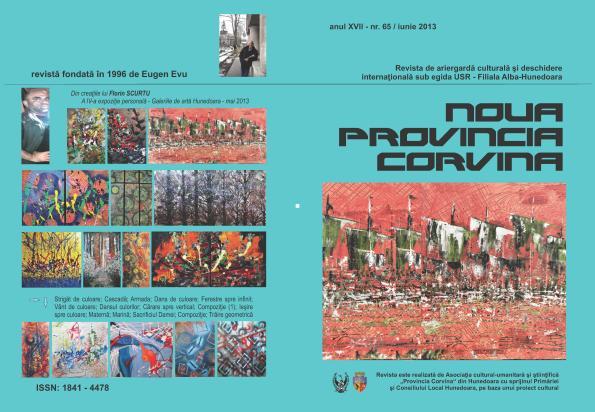 NPC iunie 13