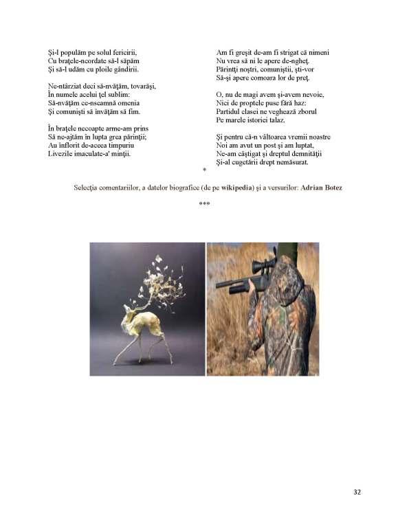 Labis de Botez_Page_5