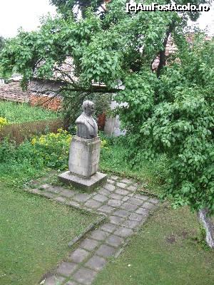 Bustul de bronz văzut din cerdac